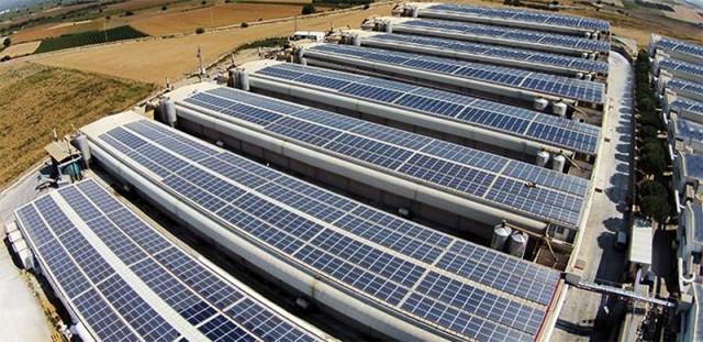 güres tavukçuluk güneş enerjisi