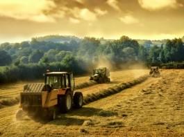 marjinal tarım arazisi