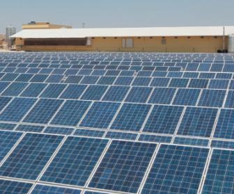 tad piliç güneş enerjisi santrali