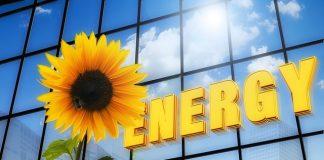 yenilenebilir enerji sektörü