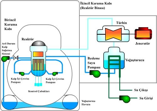 Kaynar Su Reaktörü (BWR)