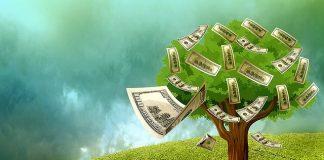 güneş enerjisi yatırımcıları