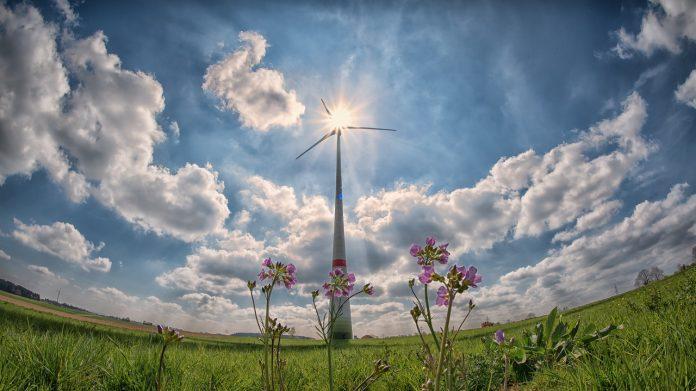 Enerji Ekosistemi