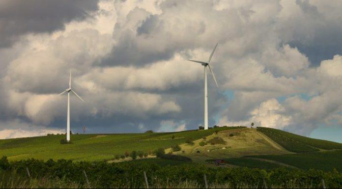 Rüzgar Enerjisinde Lider İzmir